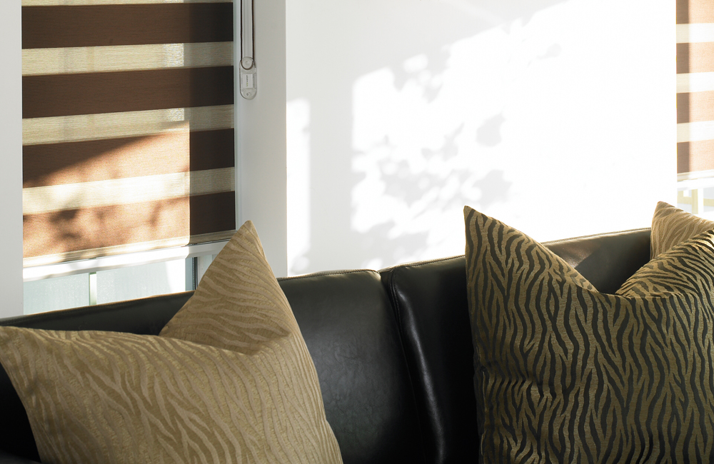 Interior Lumen Blinds