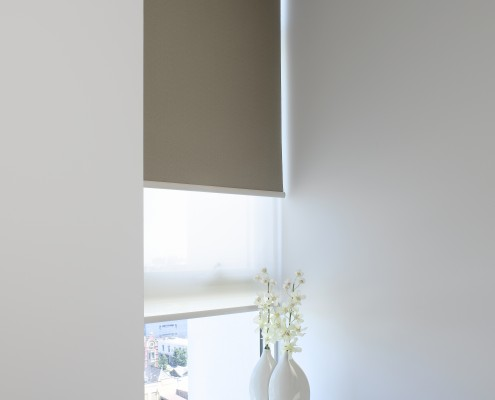 Indoor Window Roller Blinds
